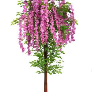planta wisteria artificial
